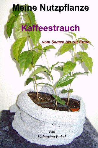 Meine Nutzpflanze, Kaffeestrauch vom Samen bi...