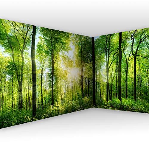 murando - Eckfototapete Wald 550x250 cm - Vli...
