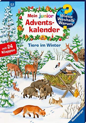 Mein junior Adventskalender Tiere im Winter (...