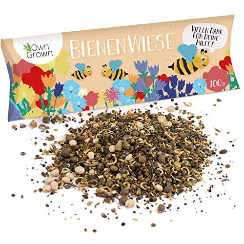 Bienenwiese Blumenmischung: 100g Premium Bien...