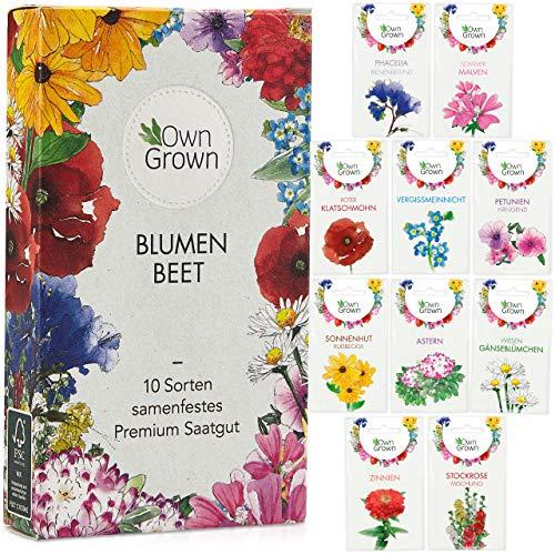 Blumen Samen für Garten und Balkon: 10 Sorte...